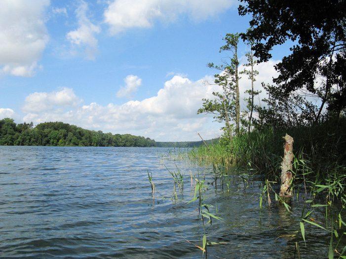 Neumühler See:  Schläge gegen Spaziergänger