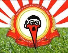 Fußball mit Respekt – Storch Heinar Cup in Schwerin