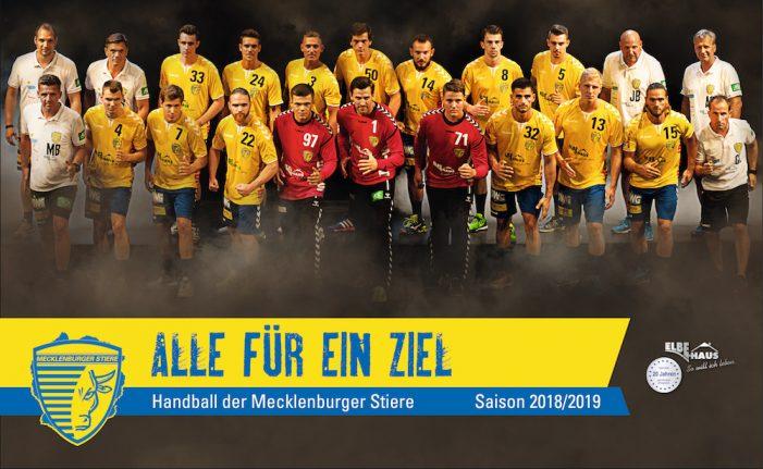 Alle für ein Ziel: Mecklenburger Stiere wollen auf Handballparkett angreifen