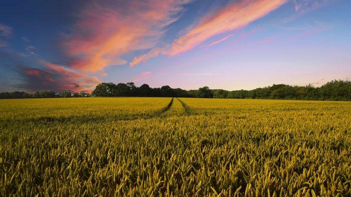 Die WEMAG warnt Landwirte vor Kollision mit Freileitungen