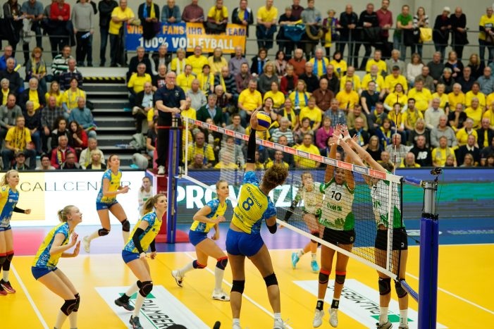 Viertelfinal-Pokalfight live anfeuern mit dem SSC